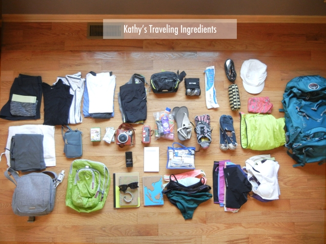 Kathy's Travel Pack